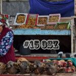 SAKWA PEŁNA KREDEK #15: Osz: święta góra, niekończący się bazar i wakacje od wakacji