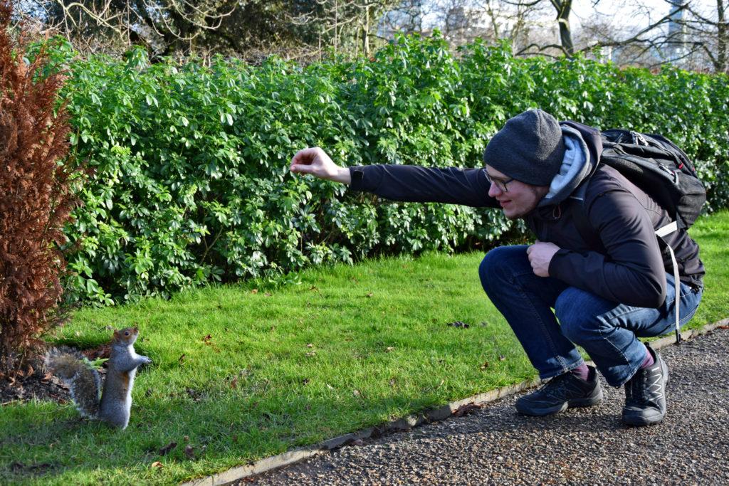 Regen't Park. W londyńskich parkach spotkamy wiewiórki...