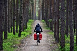 Kaszubska Marszruta - Bory Tucholskie na rowerze