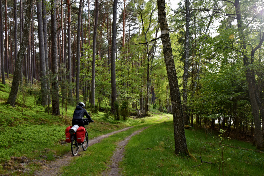 Kaszubski Park Narodowy - Kaszubska Marszreuta. Jezioro Krzywce Wielkie