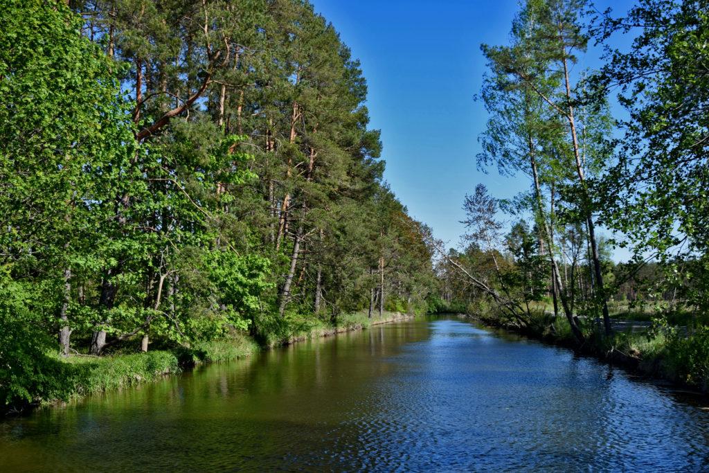 Wielki Kanał Brdy Bory Tucholskie