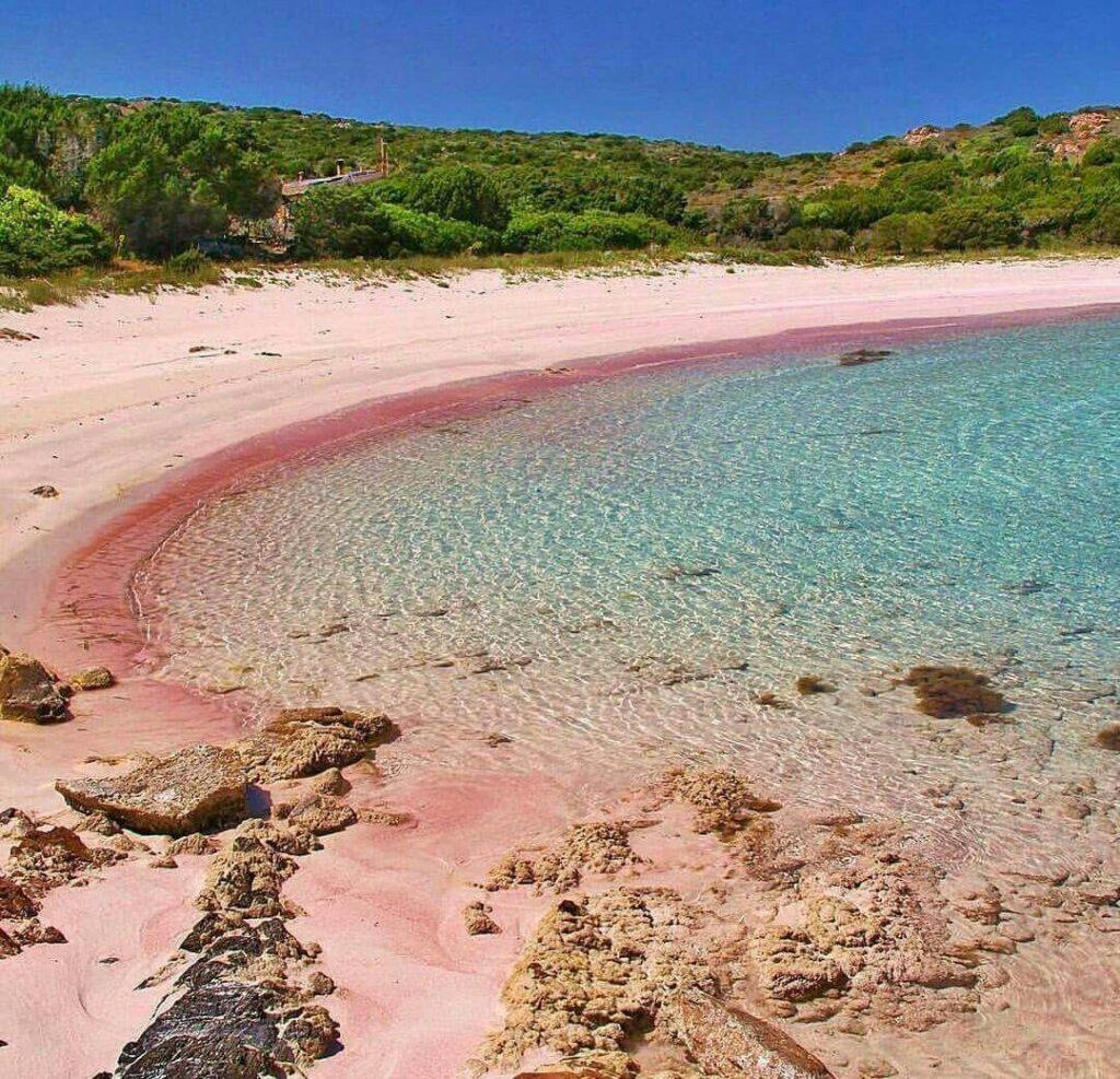 Różowa plaża Spiaggia Rosa - Budelli