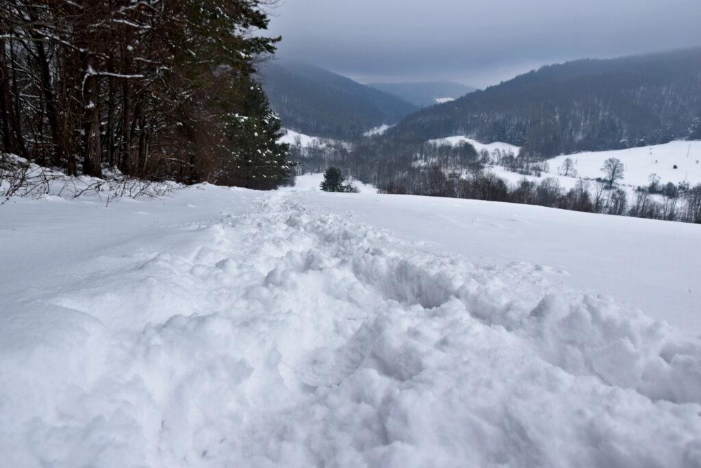 Magurski Park Narodowy - szlak Krempna - Wysokie.
