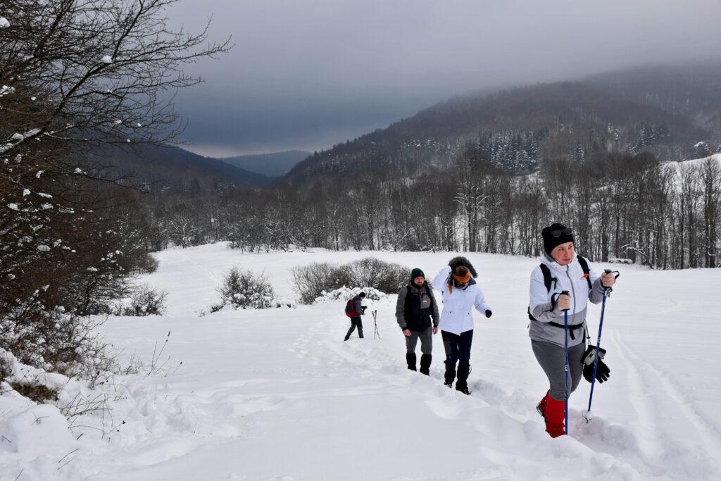 Magurski Park Narodowy - szlak Krempna - Wysokie. Zima.