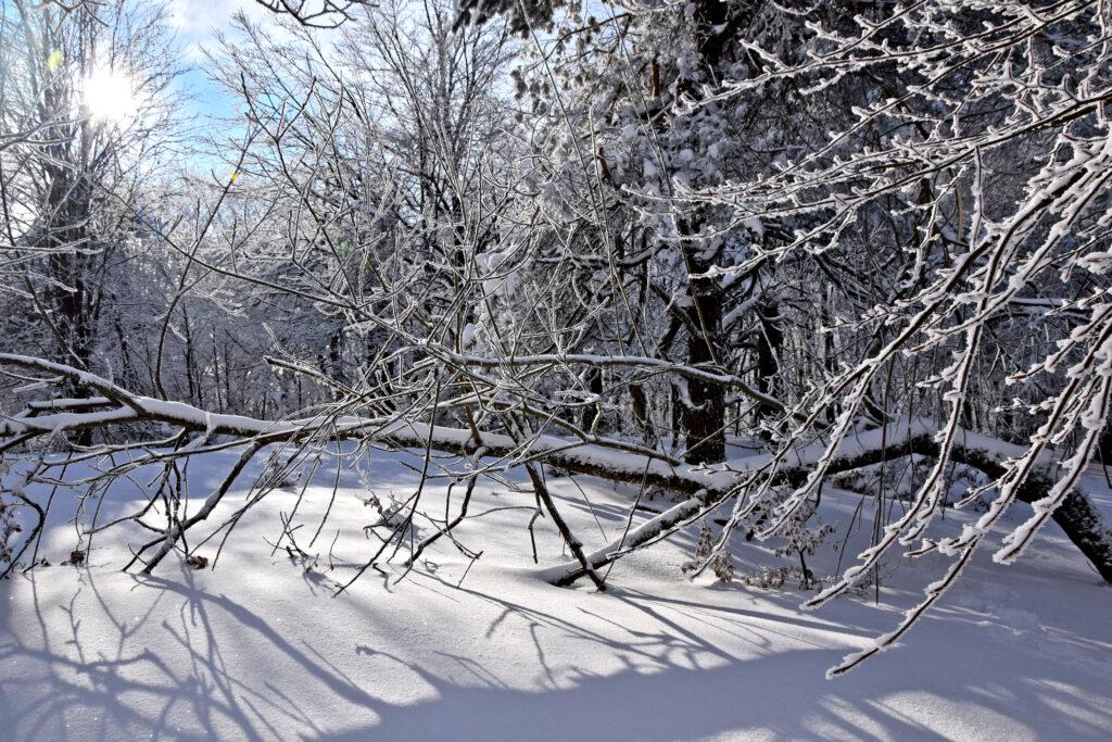 Magurski Park Narodowy zima Folusz, szlak na Magurę.