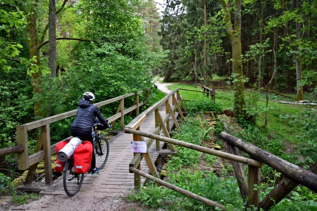 Bory Tucholskie wyprawa rowerowa