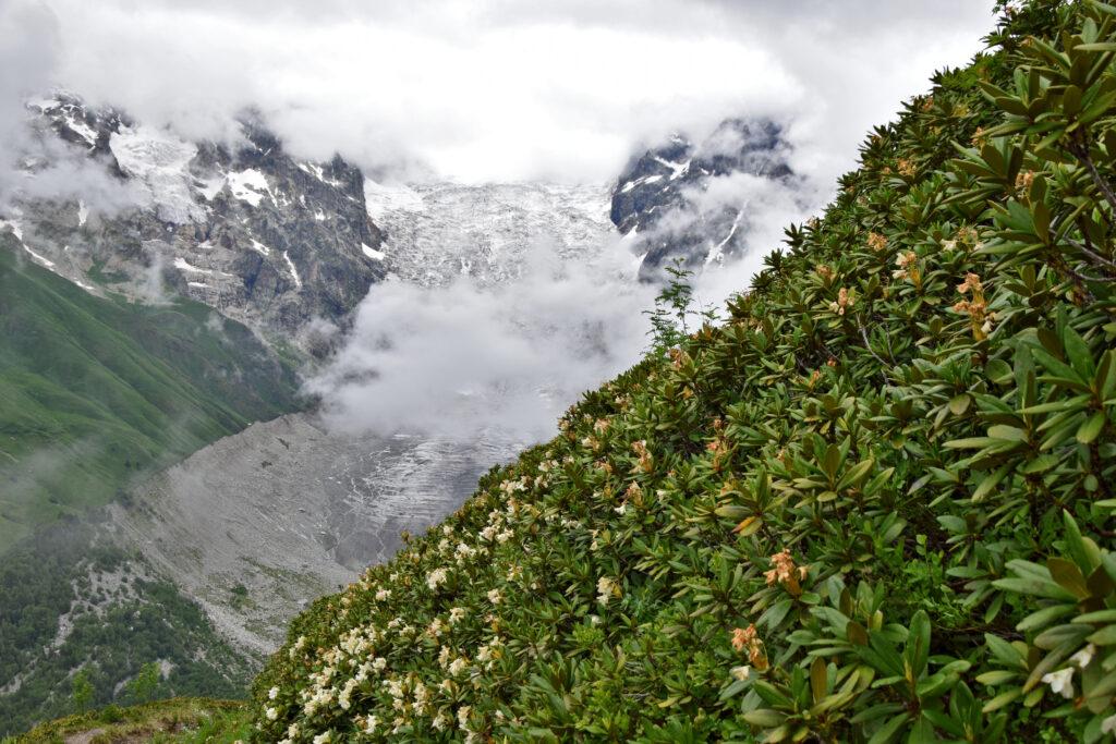 Swanetia trekking. Lodowiec Adishi - widok z podejścia na przełęcz Chkhunderi