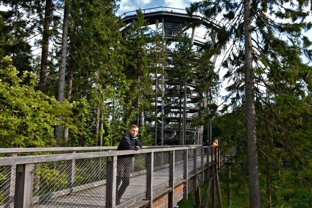 Ścieżka w koronach drzew - Karkonosze Czechy, Janske Lazne